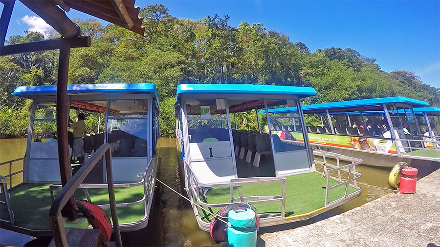 River cruise boats in Tortuguero canal